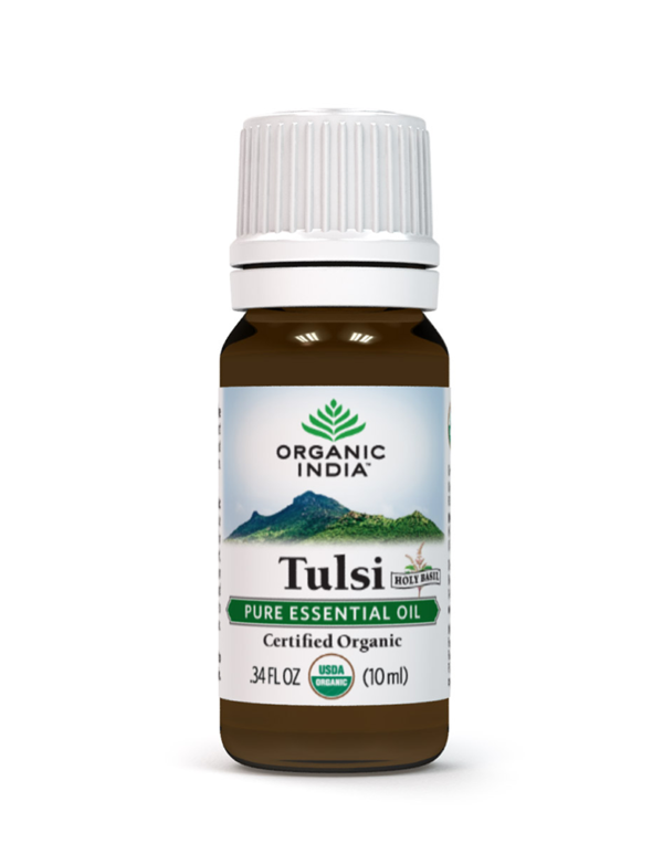 Tulsi Holy Basil Oil